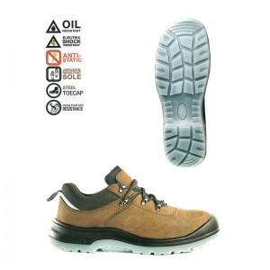 giày bảo hộ Singapore